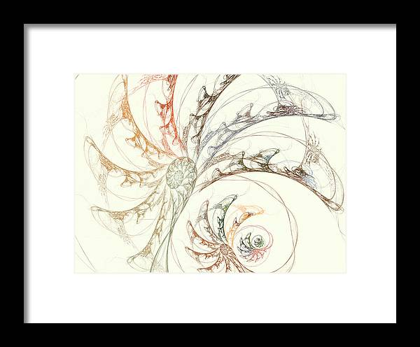 Fractal Framed Print featuring the digital art Seashell by Betsy Knapp