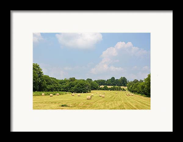 Landscapes Framed Print featuring the photograph Season Of Plenty by Jan Amiss Photography