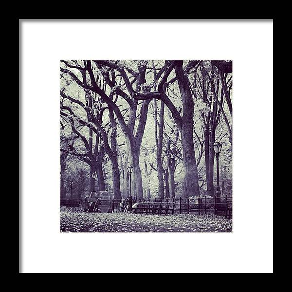 Europe Framed Print featuring the photograph Seasons Change by Randy Lemoine