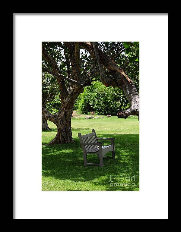 Bench Framed Print featuring the photograph Serenity by Bella Photography
