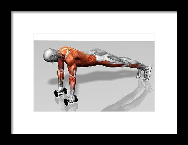 Horizontal Framed Print featuring the photograph Setanta Push Up (part 2 Of 2) by MedicalRF.com
