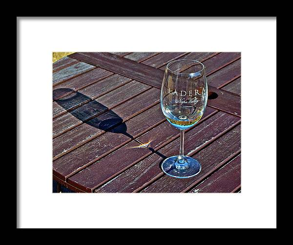 Framed Print featuring the photograph Shadow Glass by Lori Leigh