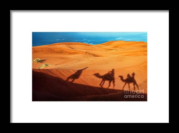 Adventure Framed Print featuring the photograph Shadows Of Desert by Alexandra Jordankova