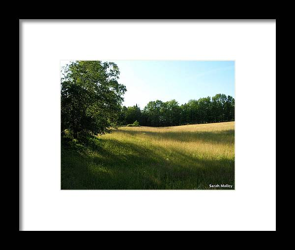 Landscape Framed Print featuring the photograph Shadowy Field by Sarah Malley