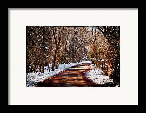 Road Framed Print featuring the photograph Shadowy Path by Lisa Spencer
