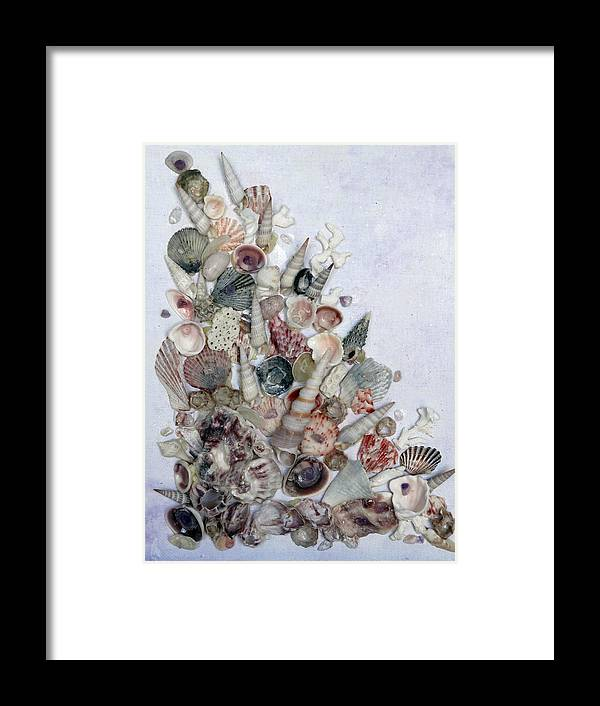 Sea Shells Framed Print featuring the photograph Shell Bouquet No 3 by Karin Dawn Kelshall- Best