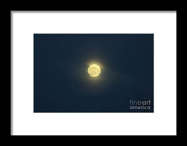 Shy Framed Print featuring the photograph Shy Moon by Alexandra Bento
