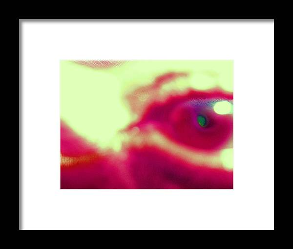 Eye Framed Print featuring the photograph Sick by Beto Machado