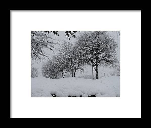 Snowfall Framed Print featuring the photograph Silence Of The Snowfall by Shawn Hughes