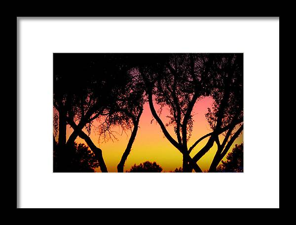 Silhouette Framed Print featuring the photograph Silhouette Of Autumn by Aaron Burrows