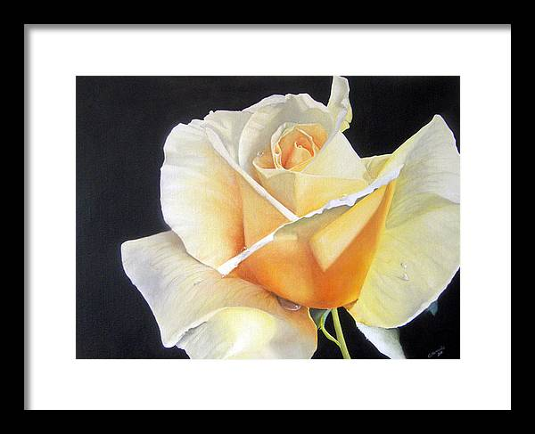 Rose Framed Print featuring the painting Simple Delight by Elaine VanWinkle