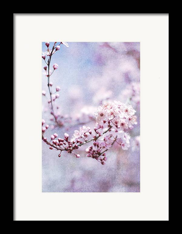 Pink Framed Print featuring the photograph Sing To Me by Rebecca Cozart