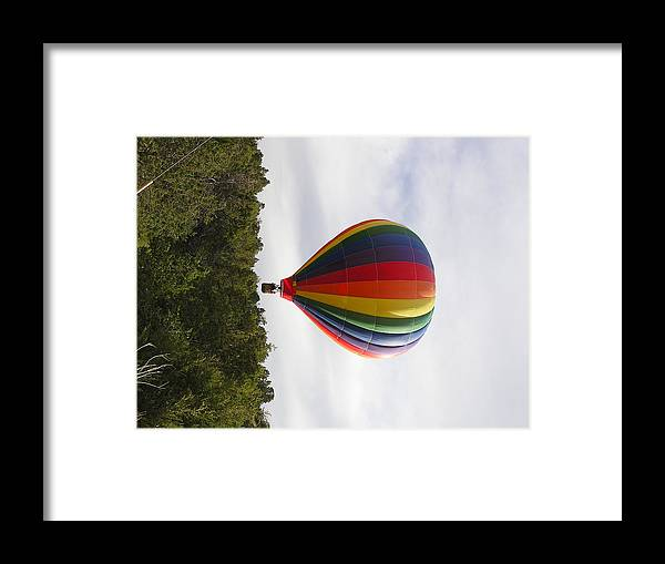 Balloons Framed Print featuring the photograph Skimming The Treetops by FeVa Fotos