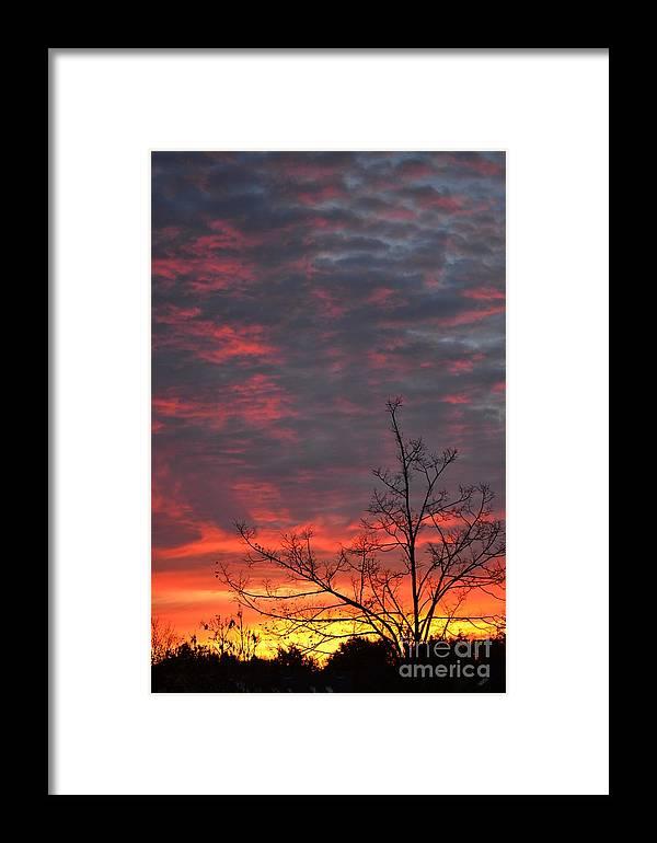 Sun Framed Print featuring the photograph Sky by Art Kleisen