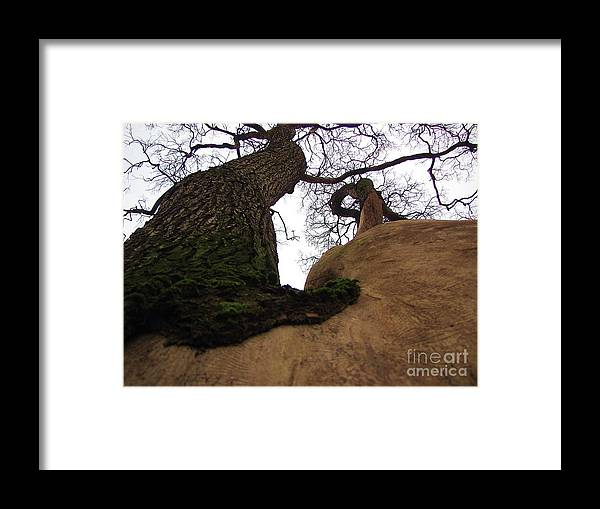 The Nature Framed Print featuring the photograph Sky In Sky by Yury Bashkin