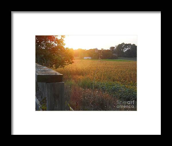 Autumn Framed Print featuring the photograph Sleepy Golden Autumn by Shelley Patten-Forster