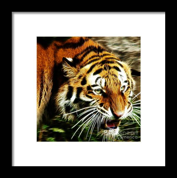 Tiger Framed Print featuring the photograph Snarling Tiger by Darleen Stry