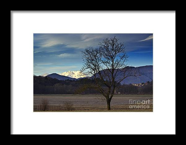 Trees Framed Print featuring the photograph Snow-capped Monte Rosa by Mats Silvan