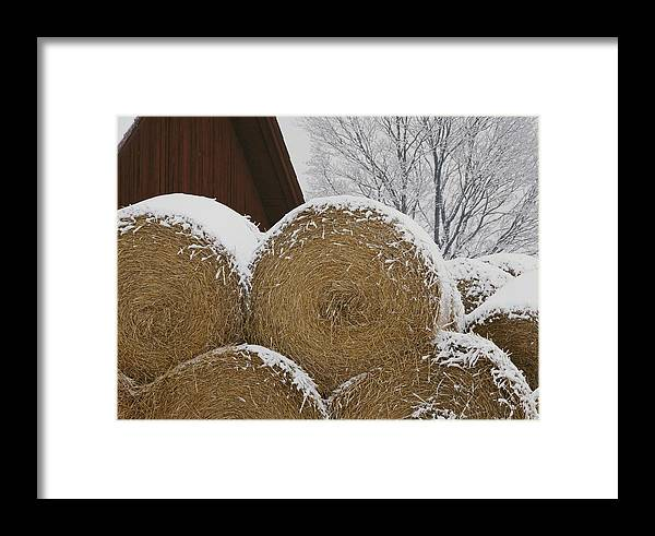 Natural Forces And Phenomena Framed Print featuring the photograph Snow Dusts Rolls Of Hay by Mattias Klum