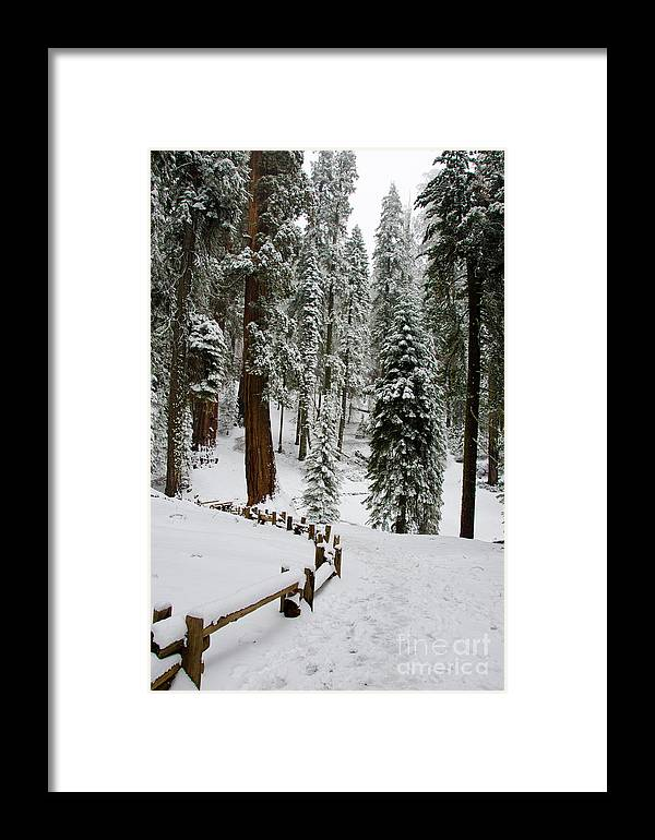 Snow Framed Print featuring the photograph Snow Fence by Baywest Imaging