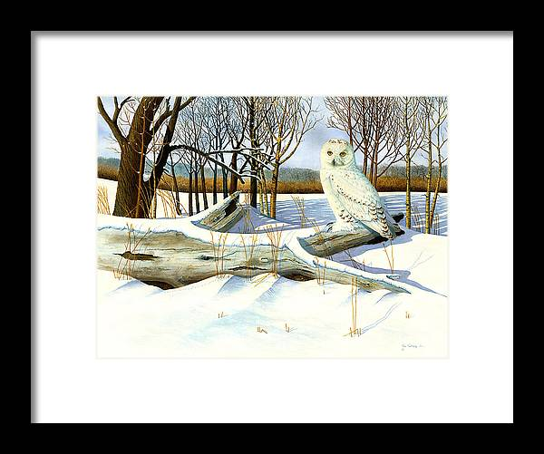 Owls.snow Scenes Framed Print featuring the painting Snowy Owl and Mouse by Bill Gehring