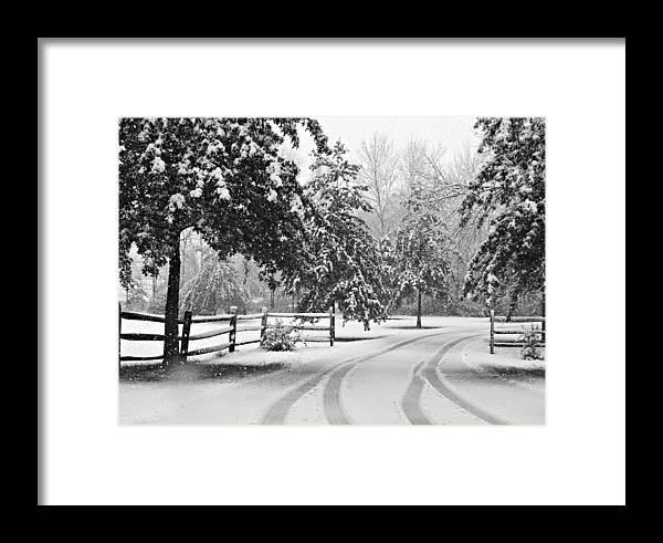 Scene Framed Print featuring the photograph Snowy Tracks by Brenda Conrad