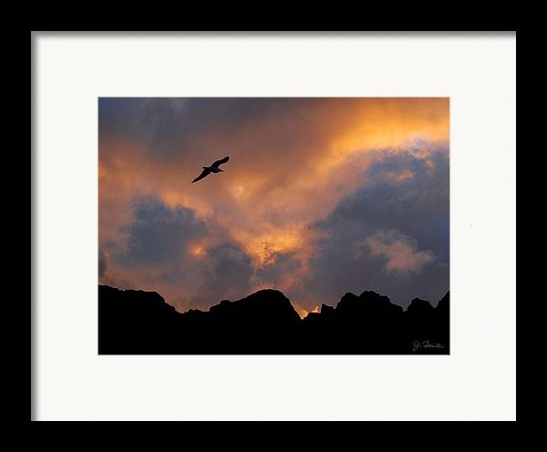 Norway Framed Print featuring the photograph Soaring In The Midnight Sun by Joe Bonita