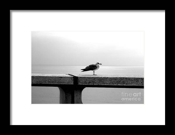 Travel Framed Print featuring the photograph Solitary Feel by Anna Duyunova
