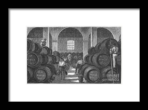 19th Century Framed Print featuring the photograph Spain: Winery by Granger