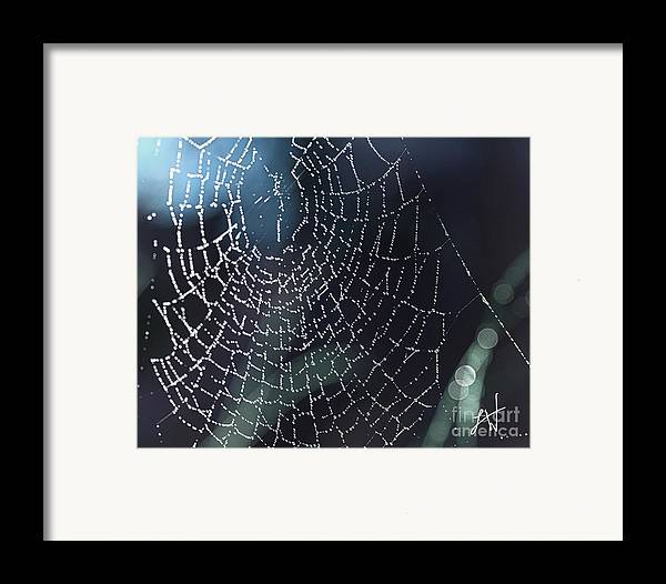 Spiderweb Framed Print featuring the photograph Spiderweb Blues by Artist and Photographer Laura Wrede