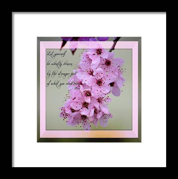 Rumi Quote Framed Print featuring the photograph Spring Flowering Tree Inspirational Rumi Floral by P S