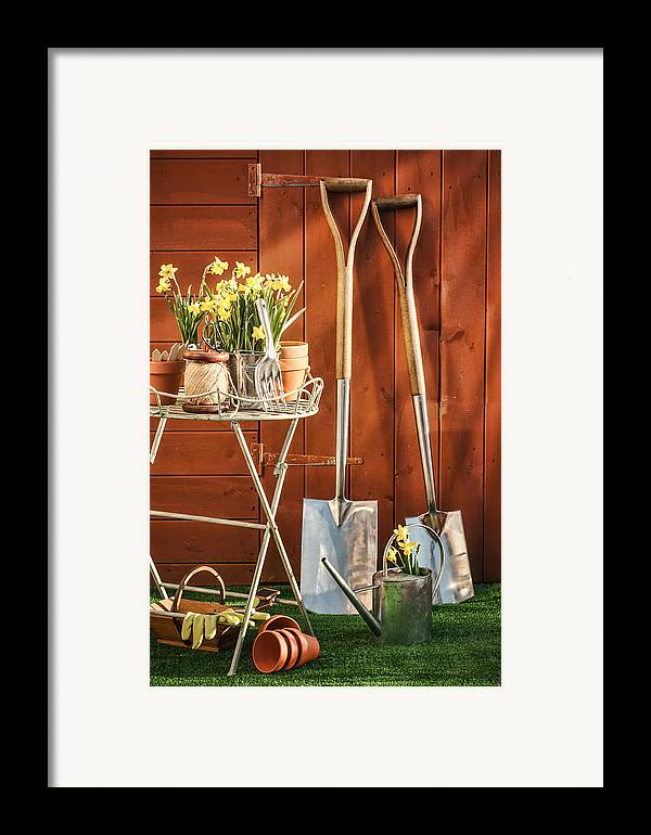 Garden Framed Print featuring the photograph Spring Gardening by Amanda Elwell