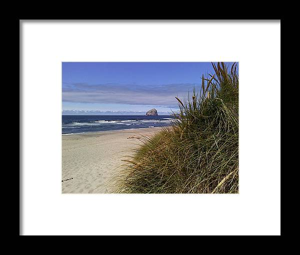 Beach Framed Print featuring the photograph Spring On The Beach by Elizabeth Ford
