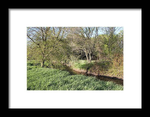 Nature Framed Print featuring the photograph Springtime Meadow by Paul Hurtubise