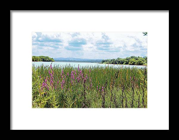 Reservoir Framed Print featuring the photograph Spruce Run by Frank Nicolato
