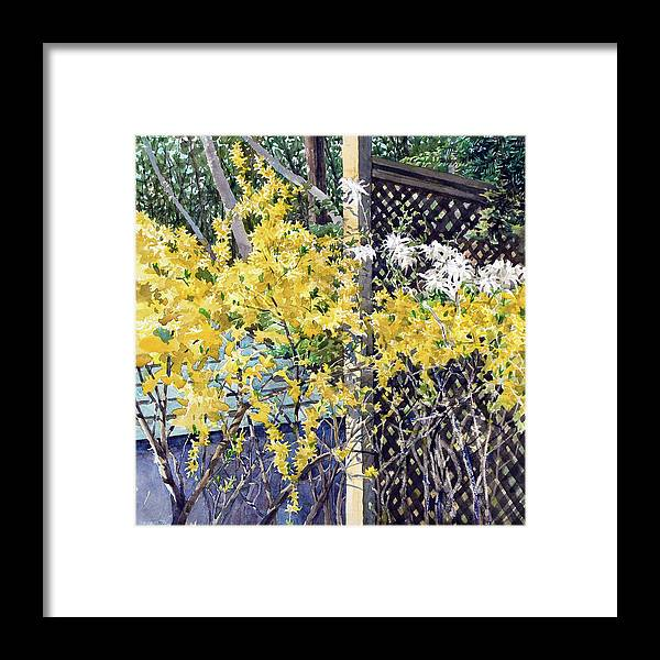 Peter Sit Watercolour Framed Print featuring the painting Stella Magnolia and Forthysia by Peter Sit