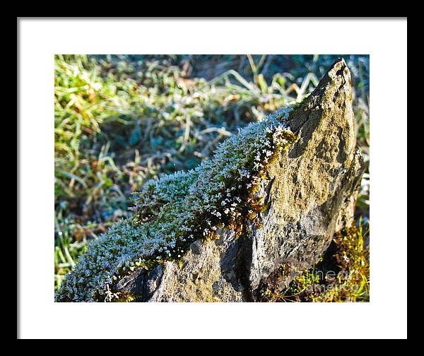 Ireland Framed Print featuring the photograph Still Alive by Black Sun Forge