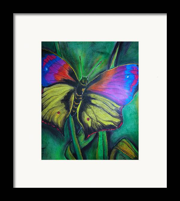 Still Life Framed Print featuring the drawing Still Butterfly by Juliana Dube