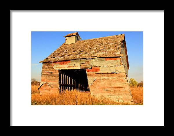 Grain Framed Print featuring the photograph Still Standing by Andrew Dyer Photography