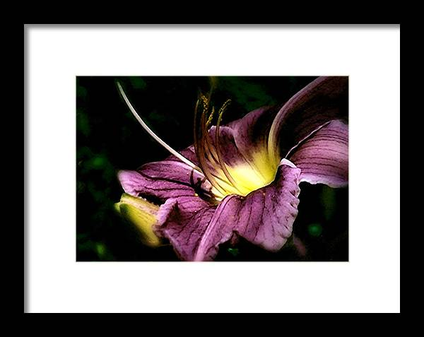 Colors Framed Print featuring the photograph Stop And Smell The Flowers by Hollie Cyr