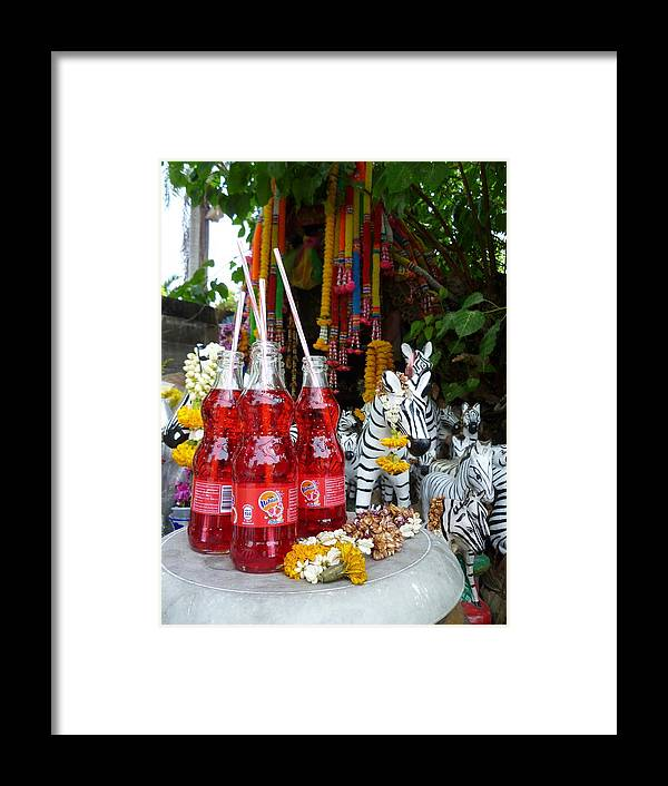 Zebra Framed Print featuring the photograph Strawberry Fizz Offerings by Gregory Smith