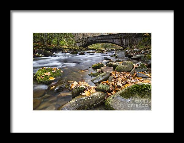 Stream In The Great Smokie Mountain National Park Framed Print featuring the photograph Stream In The Great Smokie Mountain National Park by Dustin K Ryan