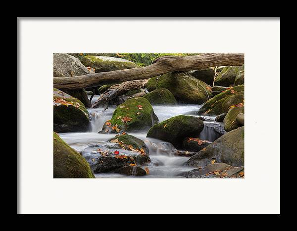 Stream Framed Print featuring the photograph Stream Of Thought by Charles Warren