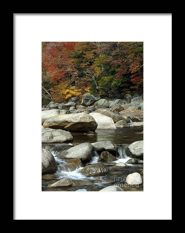 New Hampshire Framed Print featuring the photograph Streamside Color by Sandra Bronstein