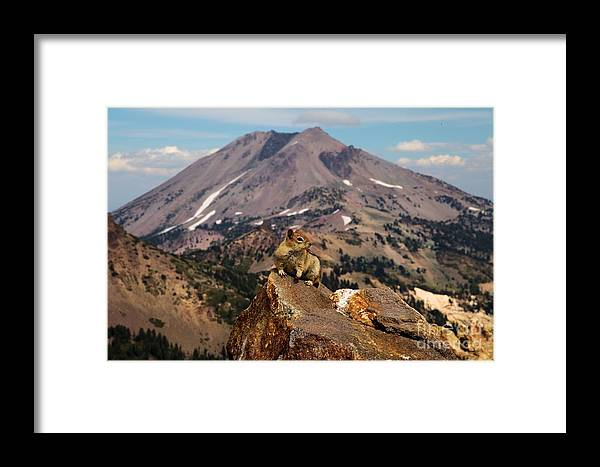 Lassen Volcanic National Park Framed Print featuring the photograph Strike A Pose by Adam Jewell