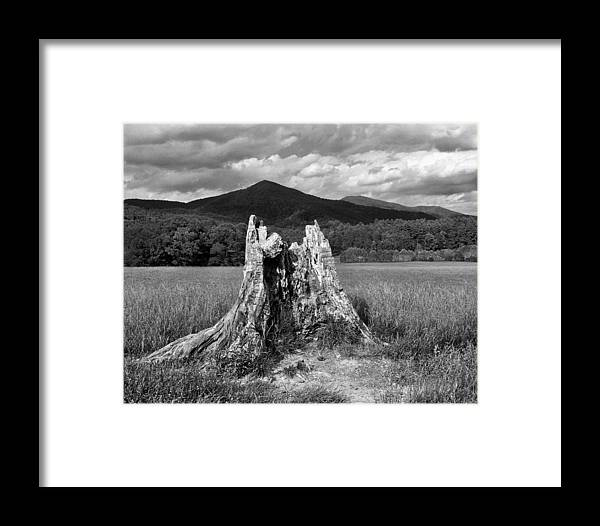 Stump. Tree Field Framed Print featuring the photograph Stump In A Field by Greg Matchick