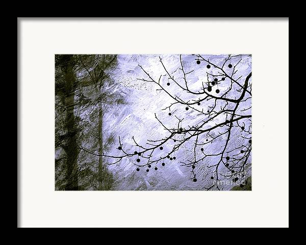 Snow Framed Print featuring the photograph Sudden Snowstorm by Judi Bagwell
