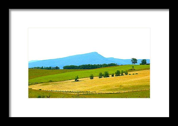 Landscape Photo Framed Print featuring the photograph Summer Symphony by Sarah Gayle Carter