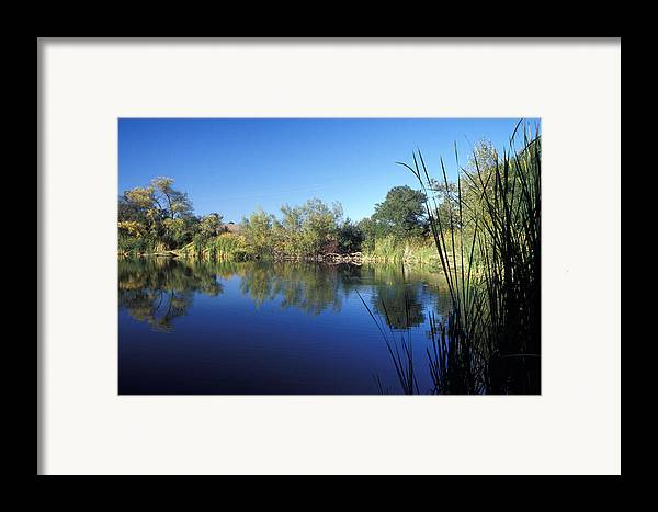Landscape Framed Print featuring the photograph Summertime Reflections by Kathy Yates