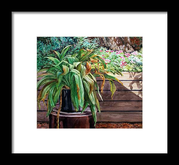 Watercolor Framed Print featuring the painting Sunburnt Kaffir Lily by Peter Sit